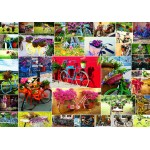 Puzzle  Grafika-02907 Collage - Vélos