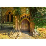 Puzzle   St Edward's Parish Church north door flanked by yew trees