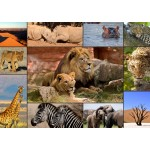 Puzzle  Grafika-T-00131 Collage - Wildlife