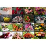 Puzzle  Grafika-T-00522 Collage - Bouquets de Fleurs