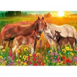 Puzzle   Premium Collection - Horses in the Meadow