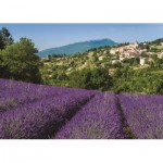 Puzzle   Provence
