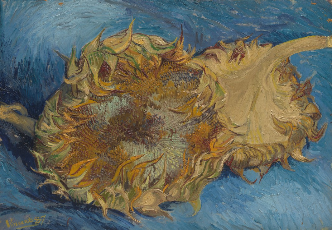 Puzzle Van Gogh Vincent : Tournesols, 1887 Grafika Kids