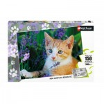 Puzzle  Nathan-86809 Chaton Roux