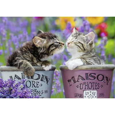Puzzle Nathan-87624 Bisous de Chatons