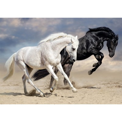 Puzzle Nathan-87791 Galop Sauvage