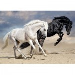 Puzzle   Galop Sauvage