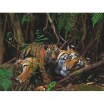 Puzzle   Mother Tiger and Cub
