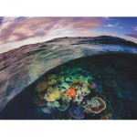 Puzzle  New-York-Puzzle-NG1989 Great Barrier Reef