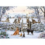 Puzzle  Otter-House-Puzzle-75092 Donkey Encounter