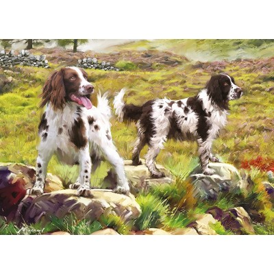 Puzzle Otter-House-Puzzle-75804 Spaniel on Moor