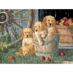 Puzzle  Cobble-Hill-54590 Pièces XXL - Terry Doughty - Puppy Pail