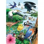 Cobble-Hill-58809 Puzzle Cadre - North American Birds