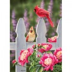 Puzzle  Cobble-Hill-80010 Cardinals and Peonies