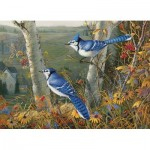 Puzzle  Cobble-Hill-80021 Blue Jays