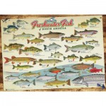 Puzzle  Cobble-Hill-80094 Freshwater Fish of North America