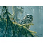 Puzzle  Cobble-Hill-85002 Pièces XXL - Mossy Branches - Spotted Owl