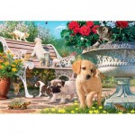 Puzzle  Perre-Anatolian-3326 Pets Hide and Seek