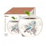 Pintoo-K1006 Puzzle 3D - Flower Pot - Singing Birds and Flowers