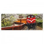 Puzzle en Plastique - Forest Train in Alishan National Park