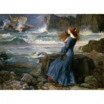 Puzzle   Waterhouse John William - La Tempête