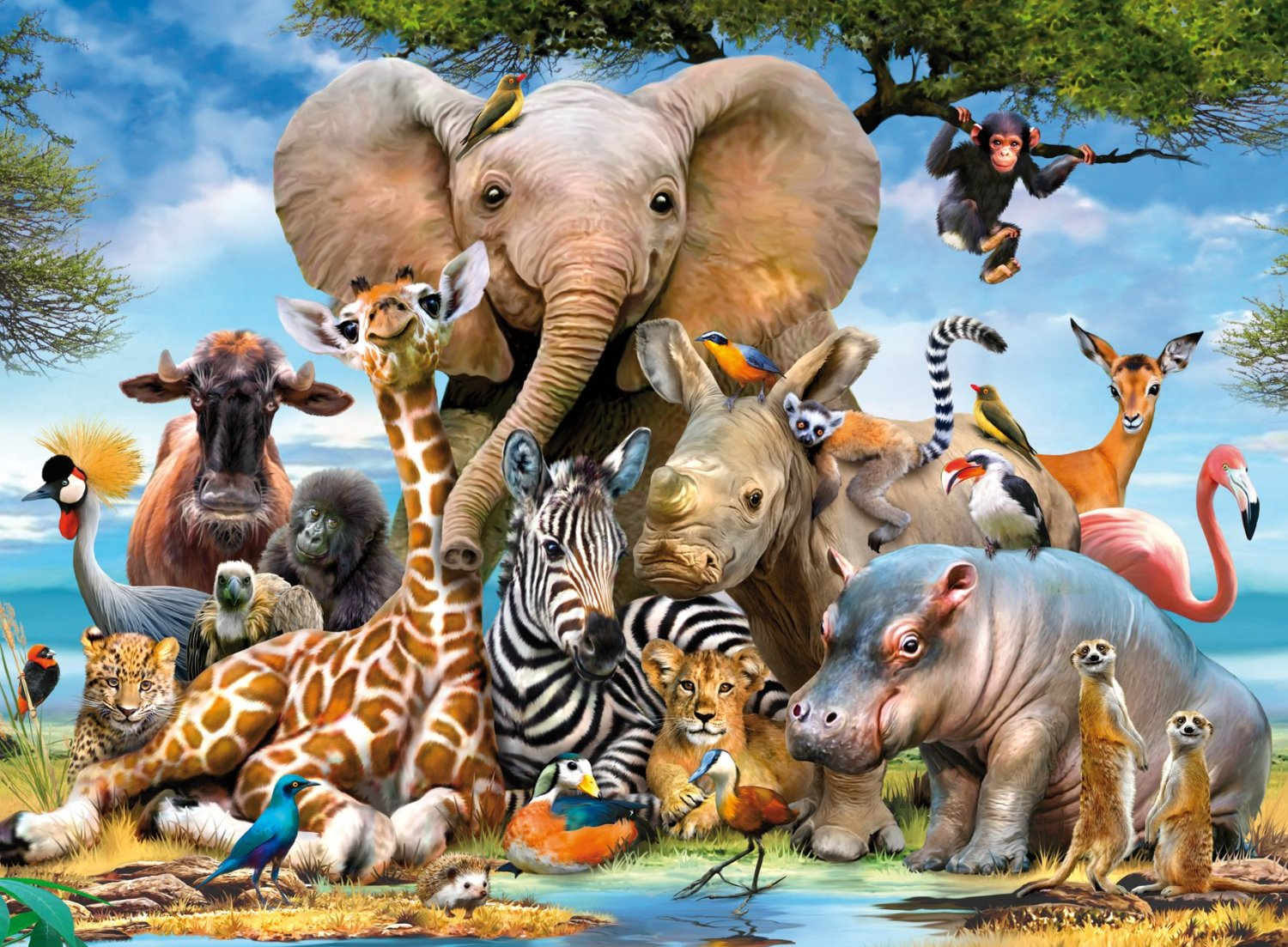 Group of wild animals together - photo#34