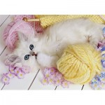 Puzzle  Step-Puzzle-77010-06 Chaton
