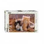 Puzzle  Step-Puzzle-78026 Chatons