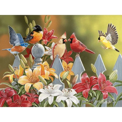 Puzzle Sunsout-30479 Pièces XXL - William Vanderdasson - Birds on a Fence