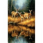 Puzzle  Sunsout-30923 Rosemary Millette - Whitetail Reflections