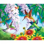 Puzzle  Sunsout-67605 Olga Kovaleva - Hummingbird Fly By