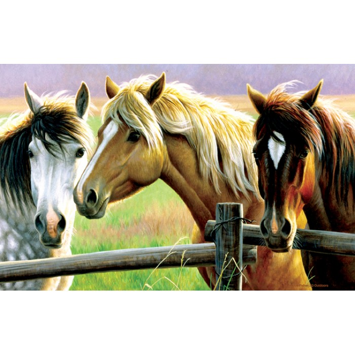 Cynthie Fisher - Horse Fence