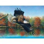 Puzzle   Abraham Hunter - Wetlands Eagle