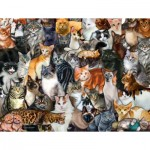 Puzzle   Pièces XXL - Cat Collage