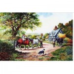 Puzzle  The-House-of-Puzzles-1509 Homeward Bound