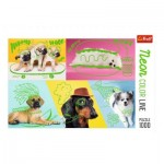 Puzzle  Trefl-10578 Neon Color Line - Chiens