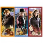 Puzzle  Trefl-13277 Harry Potter