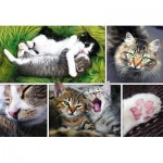 Puzzle  Trefl-26145 Collage - Chats
