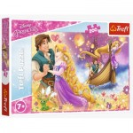 Puzzle   The Magical World of Princesses